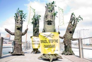 TREES PROTEST THE UNSLAUGHT OF DEFOREST STATION. COP17 2011 DURBAN SOUTH AFRICA PHOTO/JOHN ROBINSON