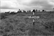 A lone grave marker in the grass strewn field at Mountain Rise Grave Yard.