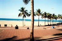 Durban beachscapes. Wedge Beach bisected by palm trees; and people enjoy the winter sun light on the promenade, Durban, South Africa.