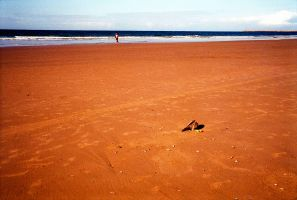 Durban beachscapes. A man runs unknowingly past a sacrificial chicken on Addington beach, many peoples also seek out God on these beaches; and some offer sacifices too. Durban, South Africa.