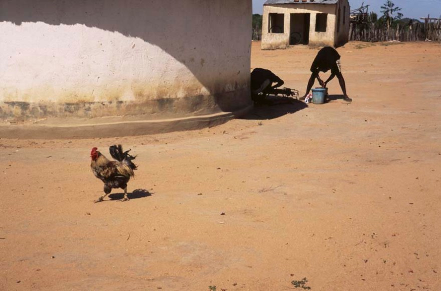 Chickens huts and washing in the Zimbabwe sun.